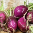 Purple-plum-radish.full