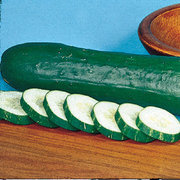 Cucumber_cucumis_sativus_tasty_green_hybrid.full