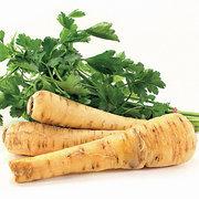 Root_vegetables_pastinaca_sativa_lancer.full