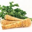 Root_vegetables_pastinaca_sativa_lancer.thumb