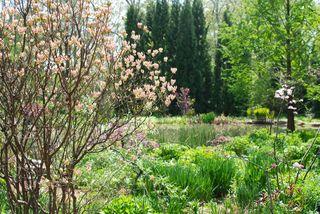 Chanticleer's Pond Garden.