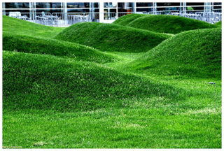Choosing The Best Mower Lawn Tires For Hills