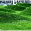 Lawn.thumb