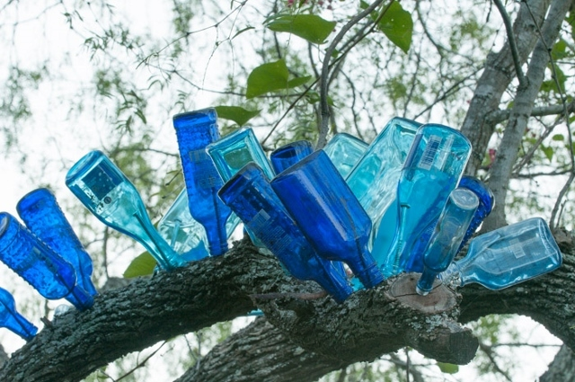 Bottle_tree.full