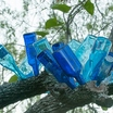 Bottle_tree.thumb