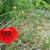 Poppy.small
