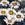 Gazanias: Gazania Splendens, 'Kiss™ Frosty White'