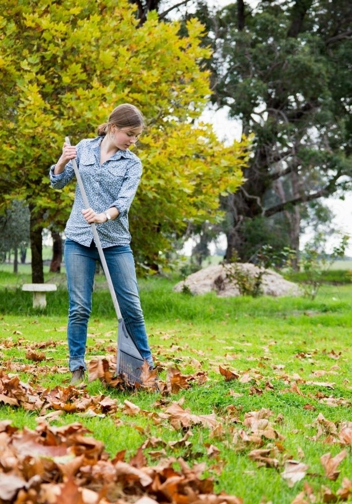 Girls-raking-fallen-autumn-leaves-in-garden-austockphoto-000013341.full